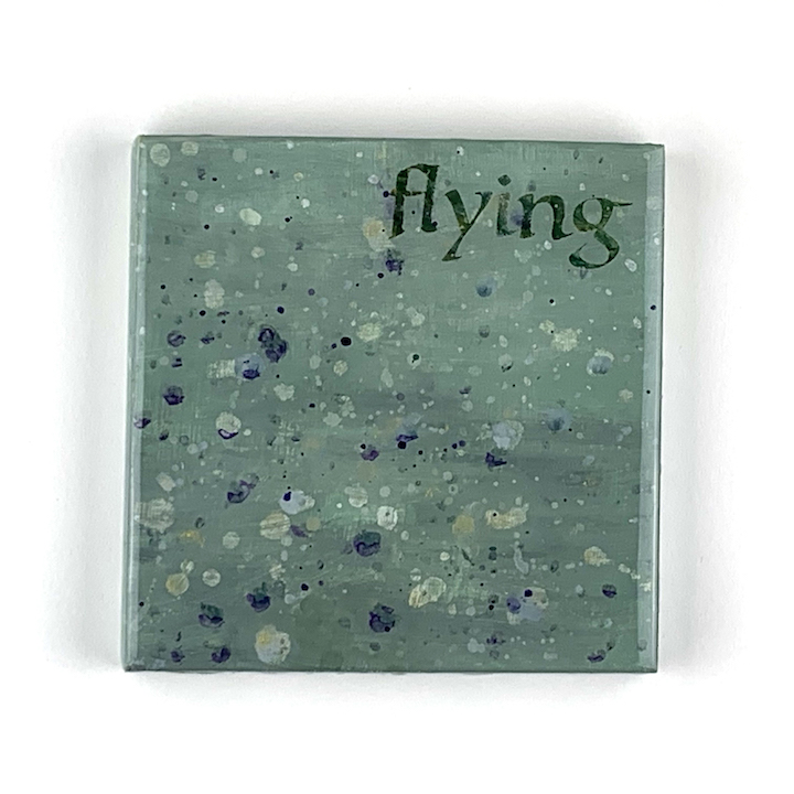 SOLD 9:4:20 flying